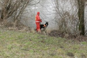 Nezvestného muža hľadali kynológovia aj popri brehoch rieky Nitra.
