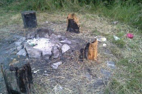 Veľké plamene z ohniska ošľahali pníky naokolo.