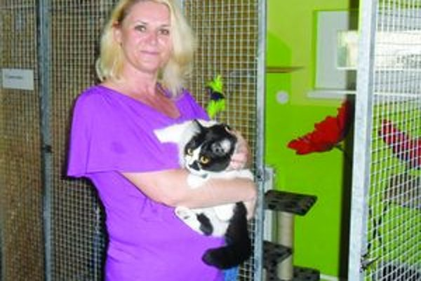 V hoteliIveta Rossová s mačacím návštevníkom, ktorý strávi u nej celý mesiac.