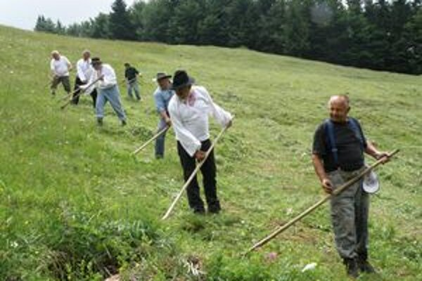 Pokosiť vysokohorskú lúku nad dedinou prišli aj dvaja súčasní a traja bývalí starostovia z Nolčova a Turian. Druhý sprava je nolčovanský starosta Peter Stano.