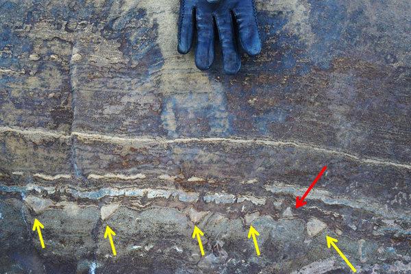 Šípky ukazujú na kužeľovité útvary v skale v Grónsku. Viacero z nich smeruje dolu, čo má podľa vedcov naznačovať, že nejde o fosílie.