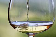 Regionálne vína predstavili vinári z Dvorov nad Žitavou a Mojmíroviec.