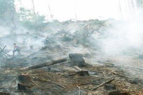 Pri vypaľovaní trávy sa malý ohník môže rozšíriť na veľký požiar.