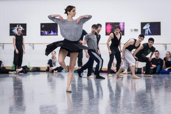 Šmok v minulosti vysvetlil, že v Pražskom komornom balete presadzovali mnoho pohybov, ktoré pochádzali z iných odborov, napríklad zo športu a akrobacie.