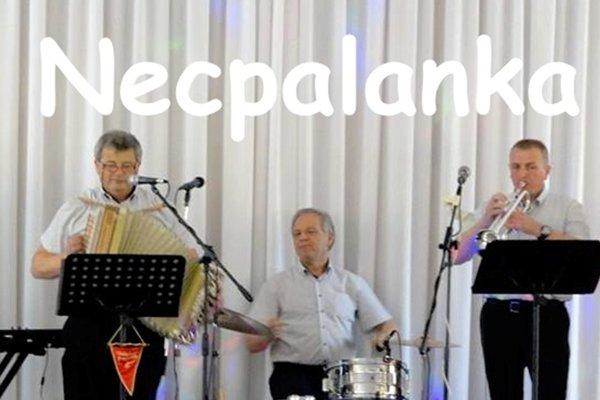 Koledy na prievidzskom námestí bude spievať Necpalanka.