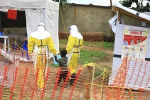 Najhoršou epidémiou eboly v dejinách je zatiaľ tá z rokov 2014-2016 v západnej Afrike.