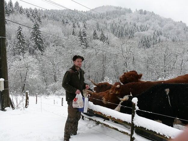 Vedľa horárne Tomáš chová aj dobytok.