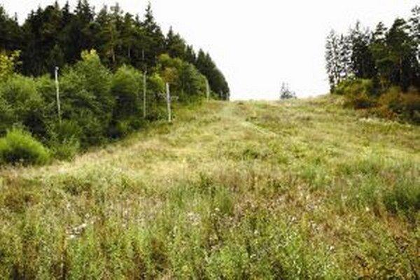 Vlek aj zjazdovka štyri roky zarastali trávou. V súčasnosti pripravujú stredisko na opätovnú prevádzku.
