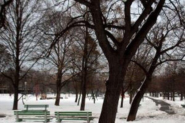 Jednu zo žien prepadli v parku.