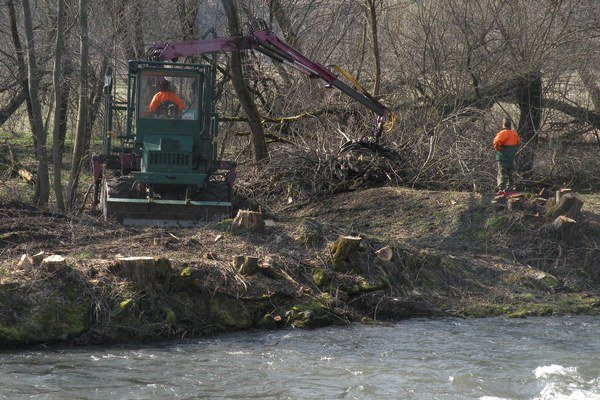 Nežiadúce rastliny na brehoch či v korytách riek môžu spôsobiť zahatanie toku a pri prívalových dažďoch sa môže voda z koryta vyliať.