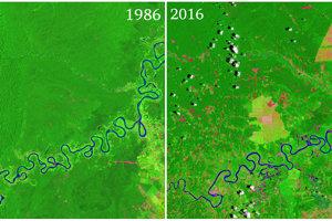 Zábery ukazujú, ako ľudia dvadsať rokov odlesňovali Amazonský prales.. Záber vpravo ukazuje zem bez lesa slabozelenou a ružovou farbou. Záberu dominujú dve veľké plantáže na palmový olej.