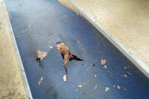 Brzda po vystrelení roztrhla podlahu.