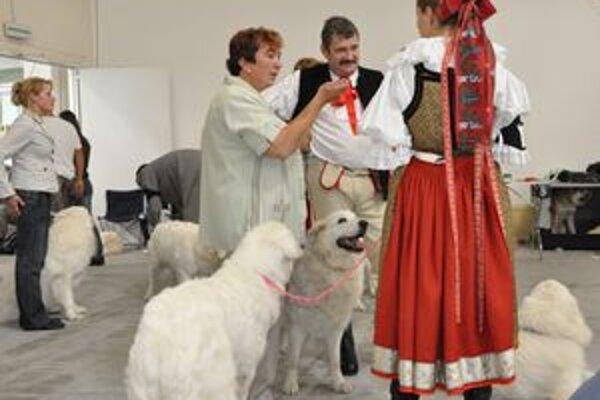 Na svetovej výstave psov Ivan Bibza z Likavky a Jana Goliášová z Pribyliny v rozhovore s českou chovateľkou čuvačov oblečenou v kroji.