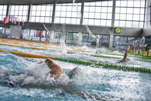 Plávanie. (ilustračný obrázok)