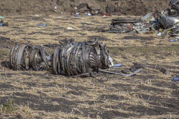 Časti zrúteného Boeingu v Etiópii.