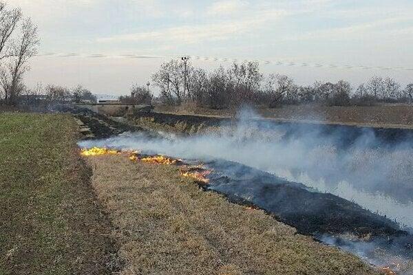 Suché porasty hasia v kraji takmer denne.