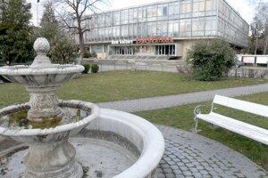 Dlhé roky boli na námestí v Leviciach dve takéto fontány.