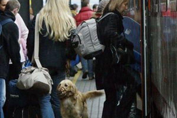 Cestovné sa bude zvyšovať od 1. januára 2012 o 10 percent.