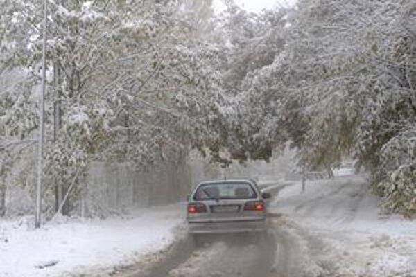 Vzhľadom na zmenu počasia vyhlásili plnú zimnú pohotovosť už aj niektoré mestá a obce na juhu Slovenska.