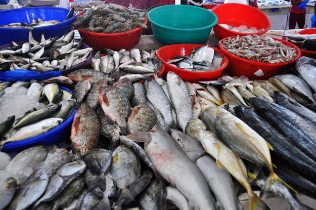 Miestny trh s čerstvými rybami
