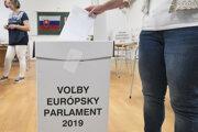 Voľby do európskeho parlamentu 2019 (ilustračné foto)