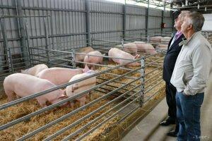 Opatrenia platia pre poľovníkov, poľnohospodárske družstvá s chovom ošípaných a domácnosti.