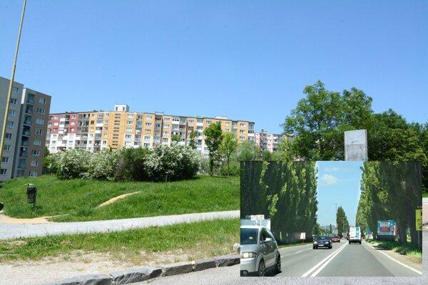 Medzi pozemkami, za ktoré je súkromník ochotný meniť svoju parcelu pod plánovanou cestou, je i zelená plocha, kde však chce mestská časť park.