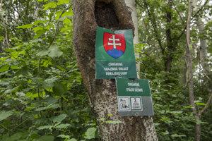 Chránená krajinná oblasť Dunajské Luhy chránené vtáčie územie.