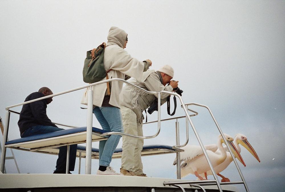 Státie s pelikánmi, paluba výletnej lode pri  pobreží Namíbie.