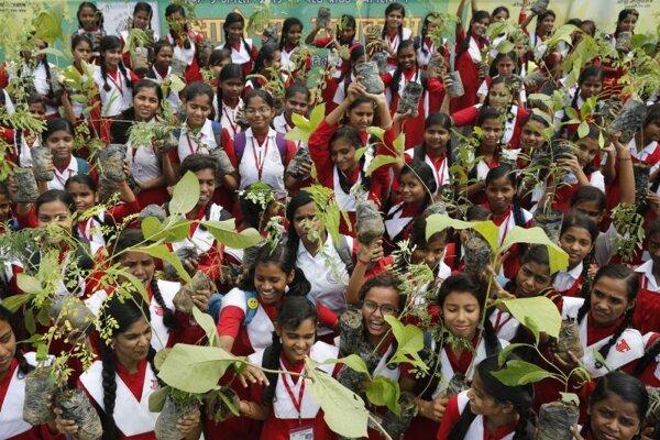 Školáci v indickom štáte Uttarpradéš držia sadenice.