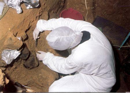 neandertalec_genom8.jpg