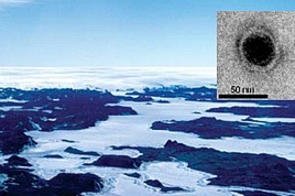 Virofág a jazero Organic Lake v Antarktíde.