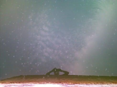 meduza490.jpg