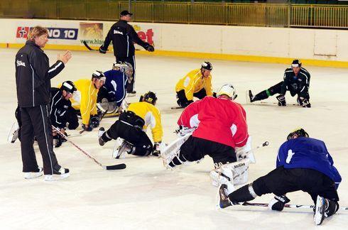 hokejisti5.jpg