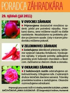 zzzz28.jpg