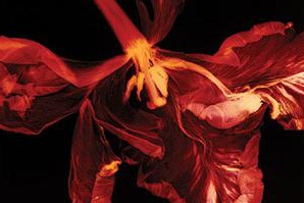 V študentskej kategórii získal cenu záber Iná príroda číslo 7. Hra svetla a tieňa odhaľuje nečakané štruktúry ukryté v kvetoch.