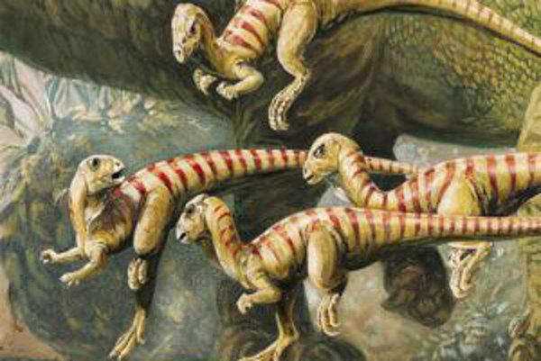 Takto mohli vyzerať dinosaury druhu Oryctodromeus cubicularis, ktorí si budovali nory. Vedci objavili ich fosílie v roku 2006 v Montane.