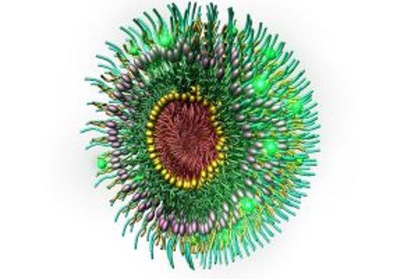 Multifunkčná nanočasticová micela, ktorá dokáže cielene lipnúť k aterosklerotickým plakom, takže v nej možno dopravovať na správne miesto diagnostické prostriedky a najmä lieky.