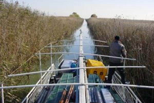 Bádatelia sa v delte Dunaje plavia k miestam odberu vzoriek sedimentov.