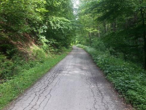 2.-pokrac--780-ujeme-po-asfaltovej-lesne_r7988.jpg
