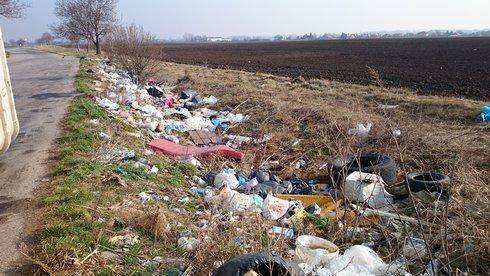 lipova-odpad-po-zimnom-obdobi_r3247_res.jpg