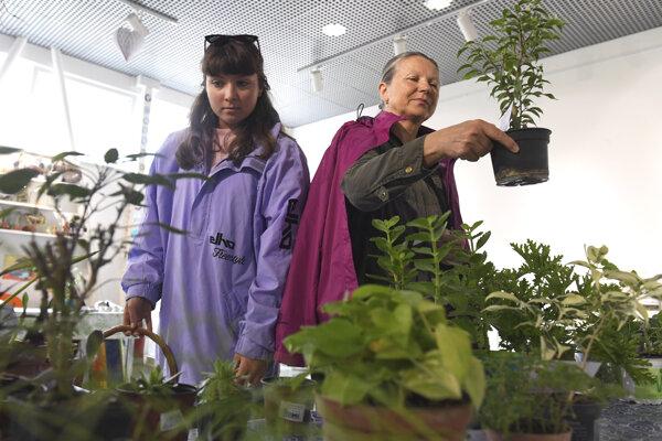 Rastlinky, ktorých máte priveľa, prinesiete, a čo vám v zbierke chýba, to si odnesiete.