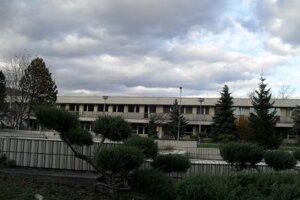 Pinelová nemocnica