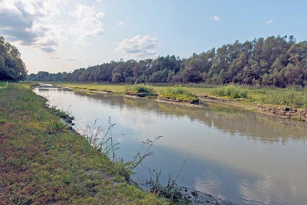 Veľkolélsky ostrov je  jeden z najväčších ostrovov na našom úseku Dunaja. Je dlhý takmer 3900 metrov a v miestach, kde je najširší, dosahuje 950 metrov.