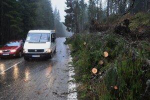 Cestu I. triedy pri Ždiari lemujú popadané a polámané stromy.