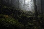 Záber Marána Kurica zo Zamkovského chaty s názvom Osamotený.