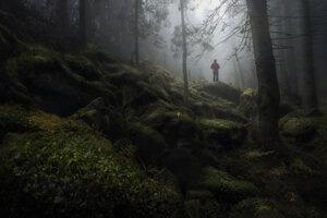 Záber Mariána Kurica zo Zamkovského chaty s názvom Osamotený.