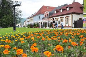 Kvety na Hviezdoslavovom námestí v Dolnom Kubíne.