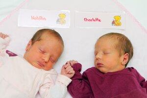 Natália Chovanová a Charlotte Chovanová z Prievidze sa narodili 10.12. v Bojniciach