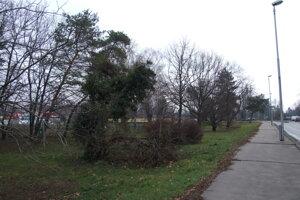 Časť zelene smerom k Mostnej má zostať zachovaná.